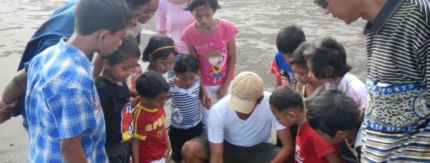 Perancak turtle conservation