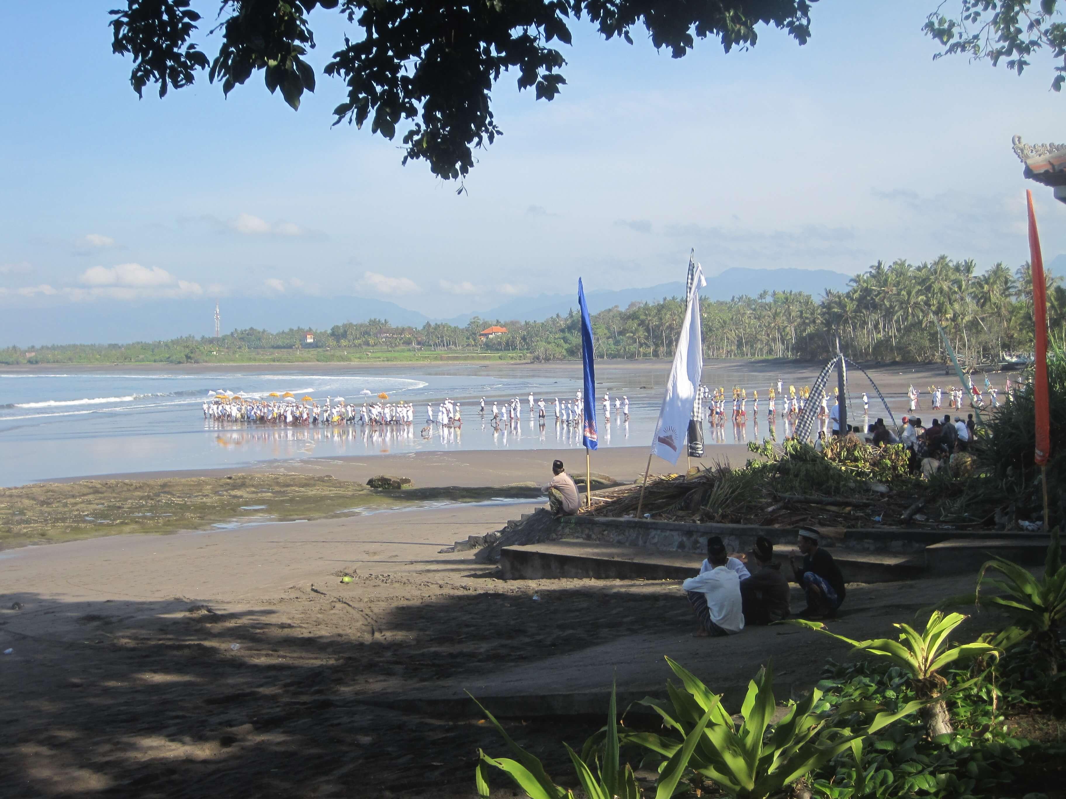 Ocean Celebration