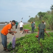 Cleaning the rubbish around Dajuma Puri Dajuma, Beach Eco-Resort & Spa, West Bali