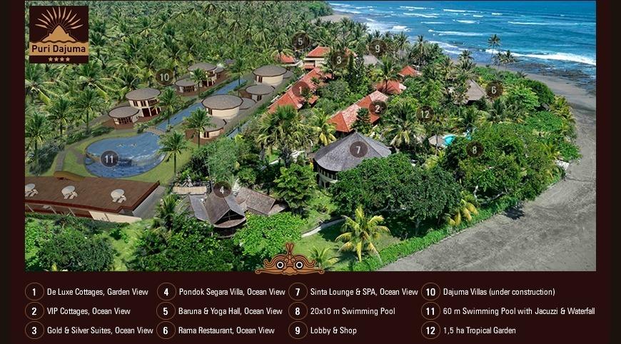 New Dajuma paradise