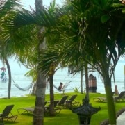 PERFECT RELAX IN DAJUMA GARDEN Puri Dajuma, Beach Eco-Resort & Spa, West Bali Beach Dajuma Tropical garden