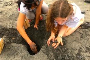 ANOTHER ECO-EXPERIENCE: SEA TURTLES PROTECTION Puri Dajuma, Beach Eco-Resort & Spa, West Bali