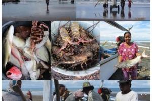 FISHERMEN LIFE NEAR DAJUMA Puri Dajuma, Beach Eco-Resort & Spa, West Bali fishing cooking