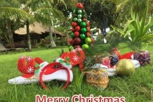 MERRY CHRISTMAS Puri Dajuma, Beach Eco-Resort & Spa, West Bali