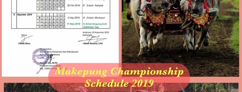 LAUNCH OF THE 2019 SEASON OF BUFFALO RACES Puri Dajuma, Beach Eco-Resort & Spa, West Bali buffalo races west bali 2019