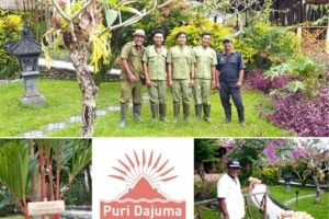 """THE MOST BEAUTIFUL GARDEN I HAVE SEEN IN BALI"" Puri Dajuma, Beach Eco-Resort & Spa, West Bali"