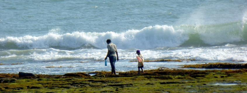 LOOKING FOR CRABS... Puri Dajuma, Beach Eco-Resort & Spa, West Bali