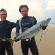 LOOKS LIKE BARRACUDA BUT IS NOT! Puri Dajuma, Beach Eco-Resort & Spa, West Bali