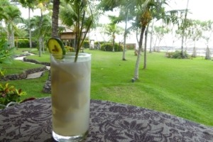 « SELAMAT DATANG » - WELCOME DRINK! Puri Dajuma, Beach Eco-Resort & Spa, West Bali