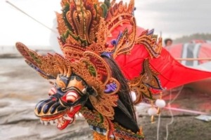 FOR BALINESE AND FOR BALI LOVERS - KITES, TRADITIONS, ART AND FUN