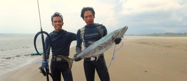 LOOKS LIKE BARRACUDA BUT IS NOT! Puri Dajuma, Beach Eco-Resort & Spa, West Bali