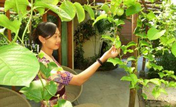 PASSION FRUIT JUST FOR YOU Puri Dajuma, Beach Eco-Resort & Spa, West Bali