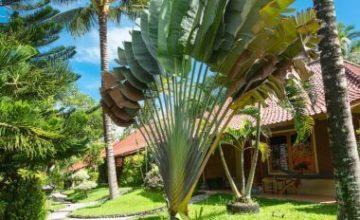 DE LUXE Cottage Puri Dajuma, Plages Eco-Resort & Spa, Bali ouest 7