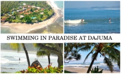 DAJUMA BEACHES