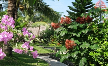 BALI IN THE CRISIS Puri Dajuma, Beach Eco-Resort & Spa, West Bali tropical garden